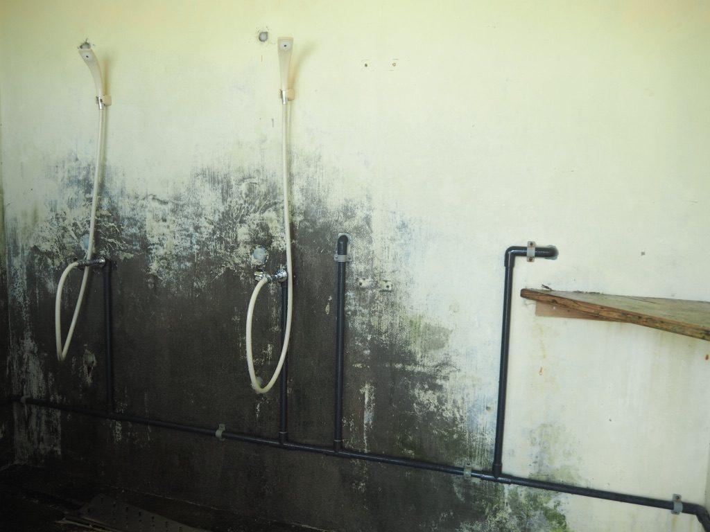 ニシ浜 シャワー