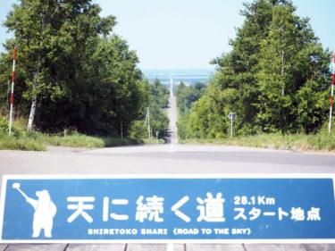 北海道「天に続く道」は絶景写真スポット!展望台へのアクセスも紹介