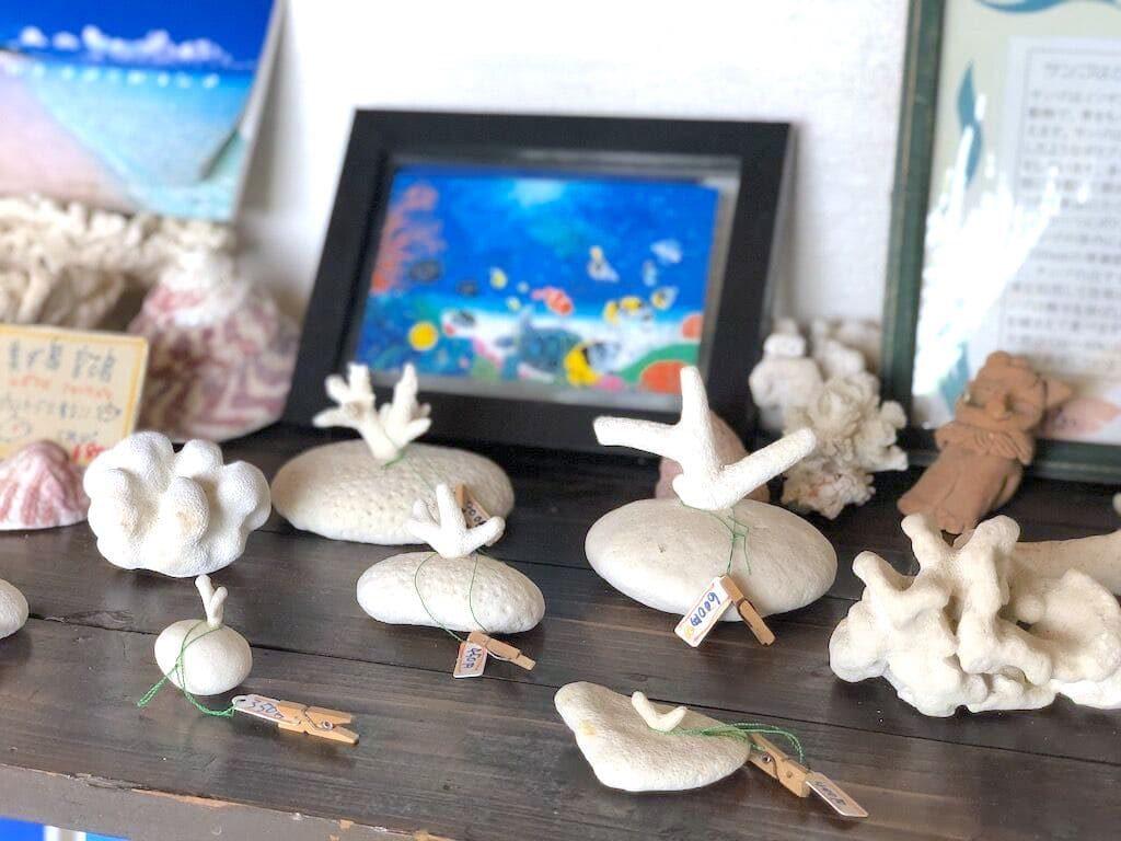 サンゴの置物