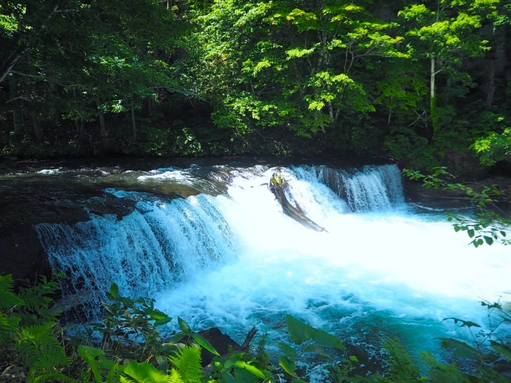 さくらの滝 周辺