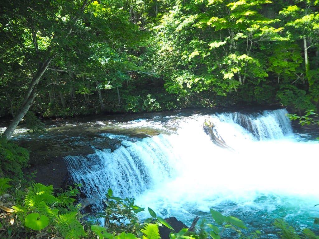 さくらの滝 全体