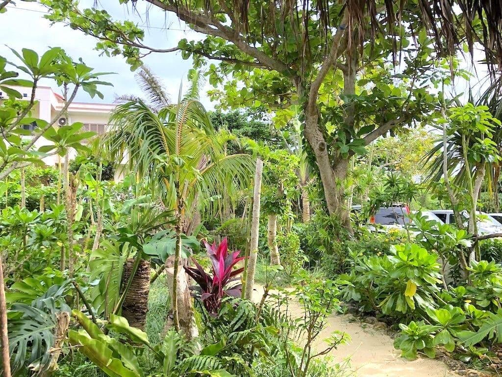 パニパニ 庭