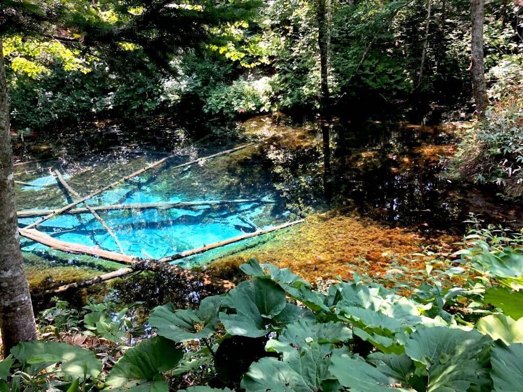 神の池 引き