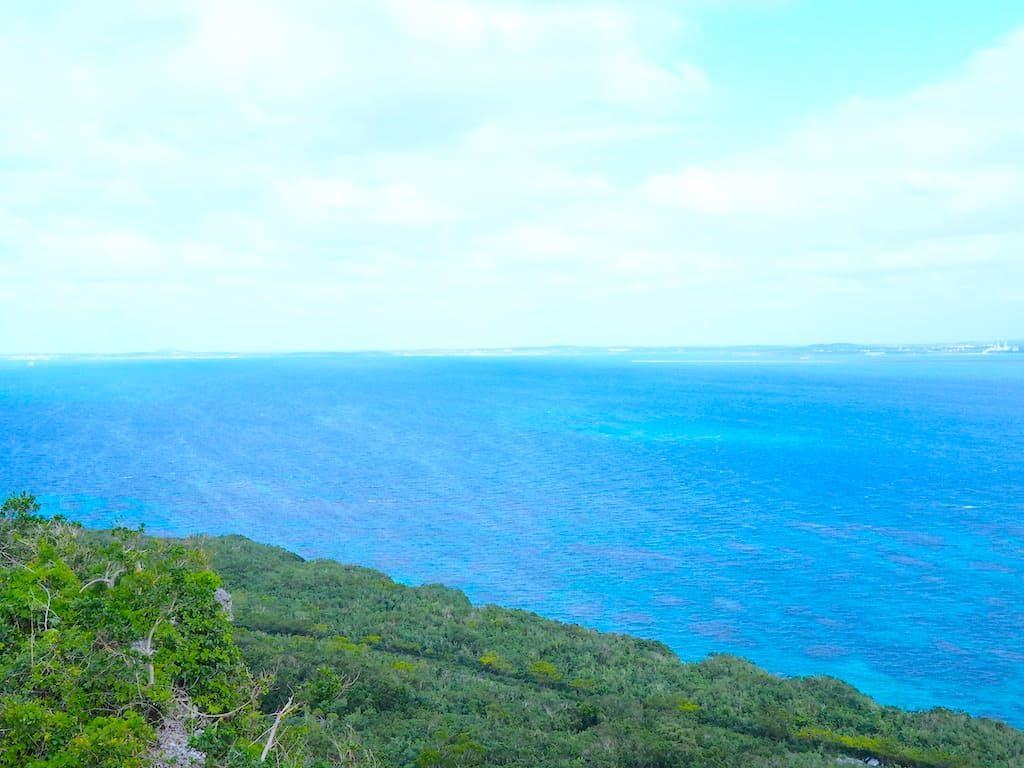 原生林 海
