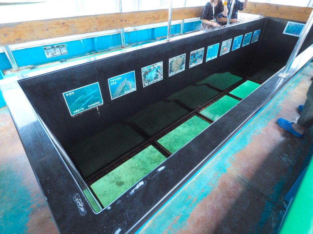 グラスボート 船内